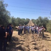 """Jornada en Martos sobre """"Manejo de suelos y Compostaje en Olivar"""""""