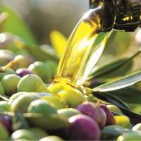 Las exportaciones de aceite de Castilla-La Mancha aumentan.