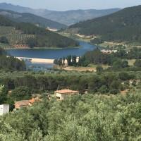 Casa de campo en VENTA con finca de olivos y almendros ecológicos