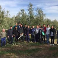 Cursos de Poda de Olivar organizados por Tierra Verde