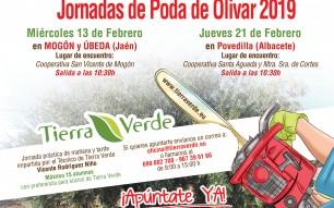Jornadas de Poda de Olivar – Febrero 2019