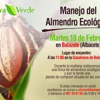Jornada sobre manejo de almendro ecológico