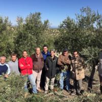 Asistentes al Curso de Poda de Olivar en Jaén y Puerta de Segura