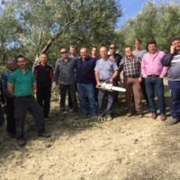 Curso de poda de olivar en Mogón